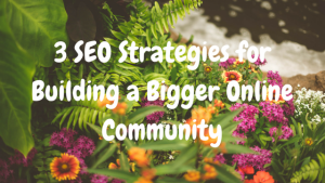 3 SEO Strategies for Building a